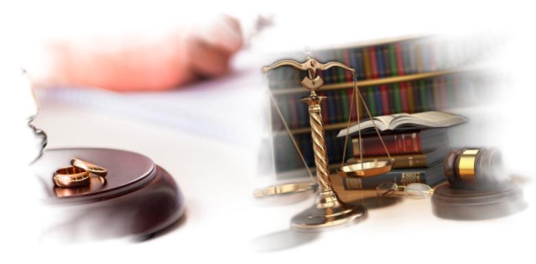 консультация юриста единой россии